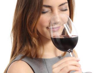 Degustace_vina_zdroj_Global_Wines_CZ_(2) (5)