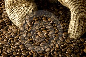 Akademie kávy 1.díl: Trochu teorie nikoho nezabije