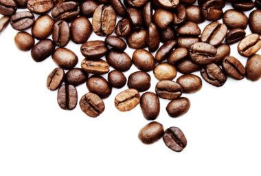 Akademie kávy 3. díl: Sklizeň a zpracování kávy