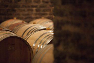 Začíná prodej vín en primeur.  Ročník 2015 může být nejlepším tohoto století!