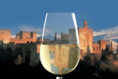 Hřejivé pozdravy zjihu Španělska:Sherry a Montilla