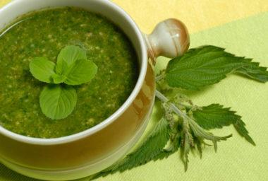 Jarní recepty: Kopřiva není plevel, ale listová zelenina