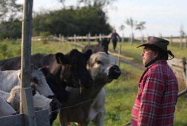 Hoteliér farmářem nebo farmář hoteliérem: den s Radovanem Sochorem