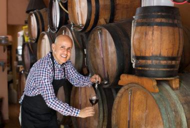 Ve Valticích vyhlásí šampiona mezi víny