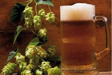 V Izraeli uvařili biblické pivo