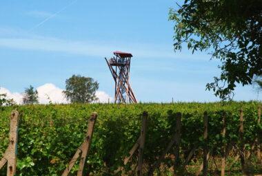 Vinařský místopis – I. díl