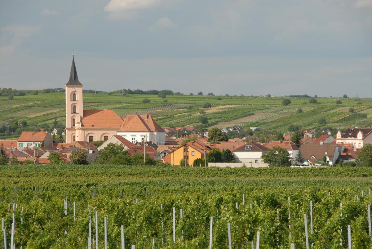 Vinařský místopis – IV. díl