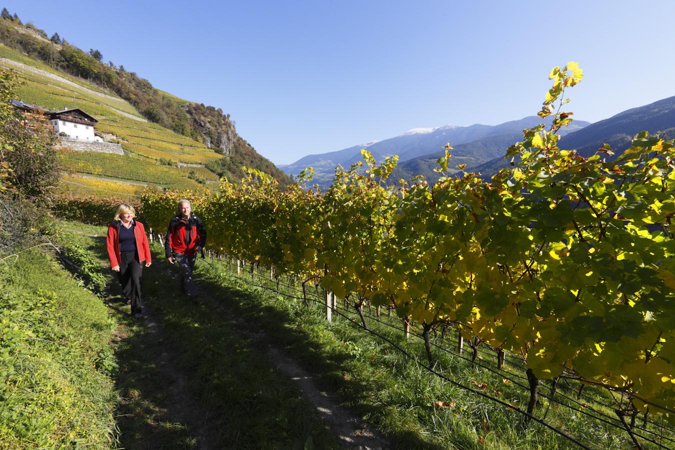 Podzim na farmách v Jižním Tyrolsku