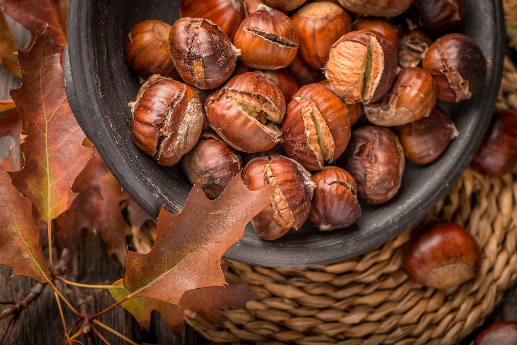 Jedlé kaštany aneb podzim na talíři