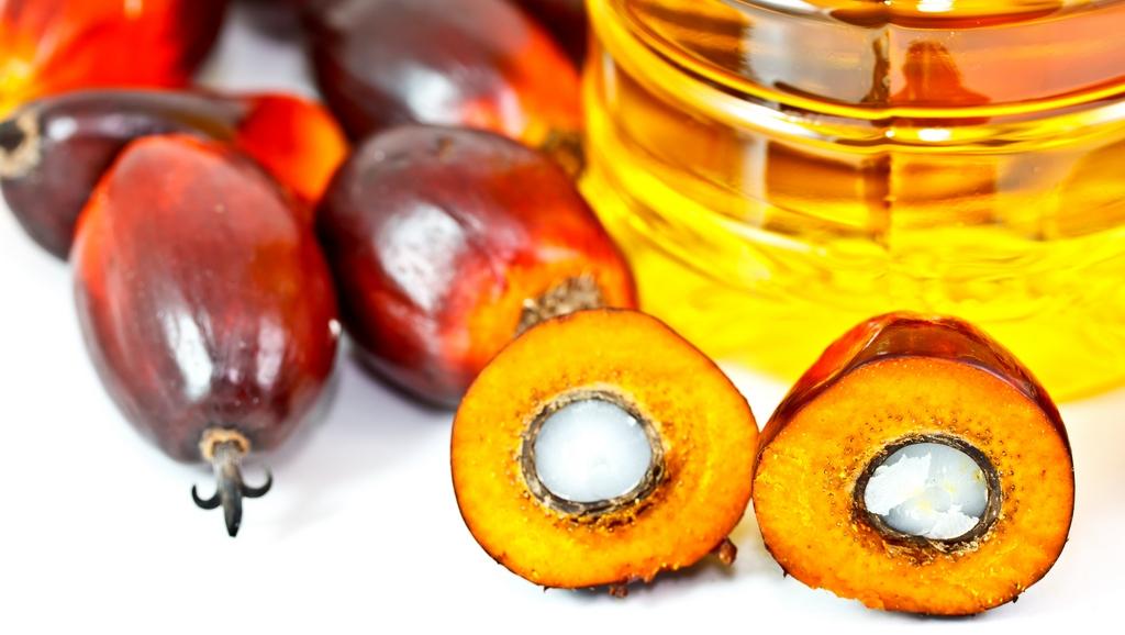 Palmový olej – víte o něm všechno?