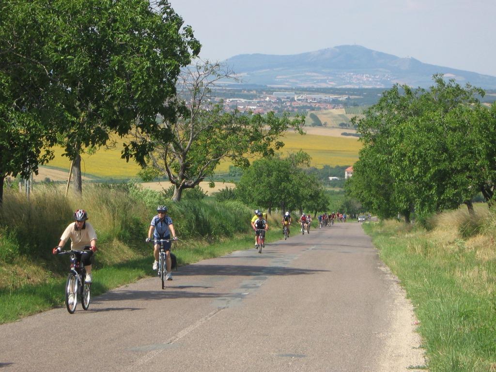 Letní putování kolem Pálavy nabídne v sobotu 16. července trasy plné výhledů a nabitý doprovodný program v cíli