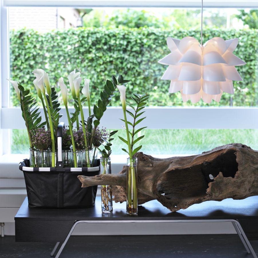 Interiér bez zeleně a květin příliš nezaujme