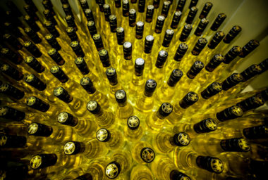 Svatomartinského vína bude letos dostatek, vinaři si chválí kvalitu sklizených hroznů