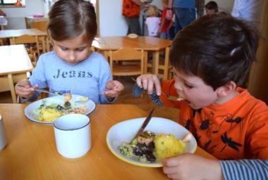 Každý rok se ve školních jídelnách vyhodí až 48 000 tun potravin