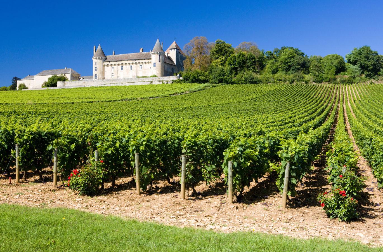 Ceny vinic grand cru se v Burgundsku za deset let zdvojnásobily