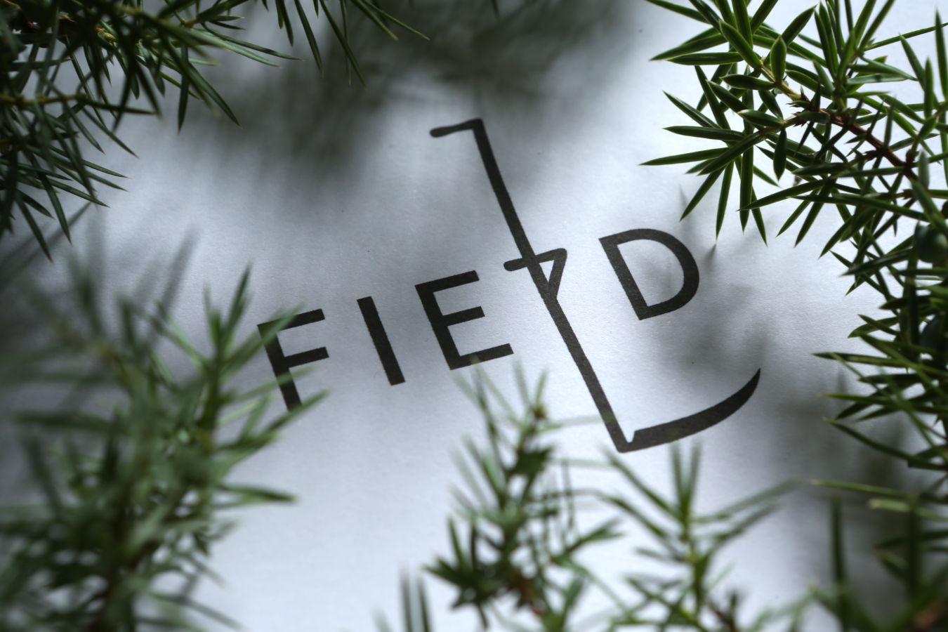 Silvestr ve Field Restaurantu