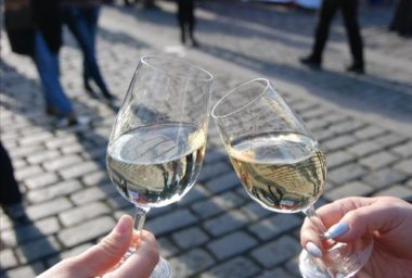 Naši vinaři získali vloni ve světě více než 900 medailí!