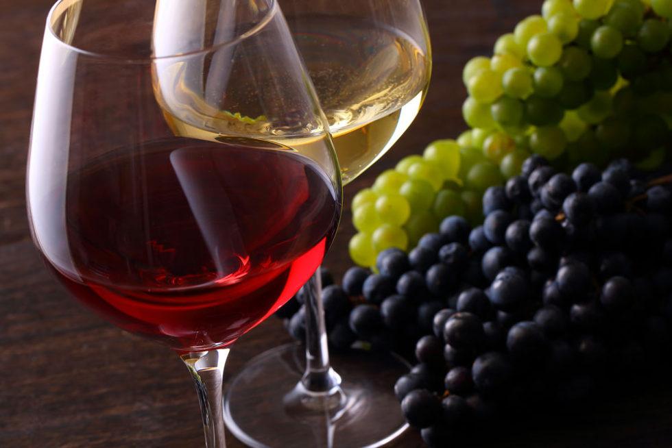 cervene a bile vino