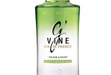 Nepostradatelná osvěžující kombinace léta: gin & tonic