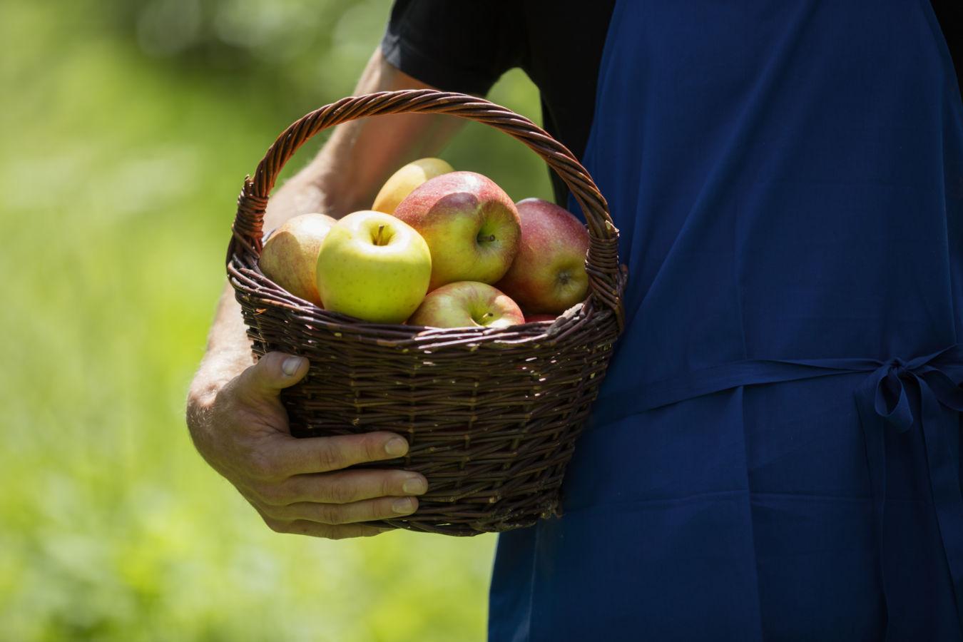 Apfelkiechl a štrúdl aneb Když přichází jablečný čas