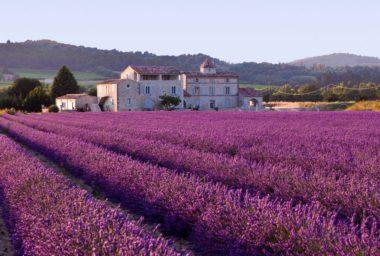 Francie: téměř 10 procent všech farem je ekologických