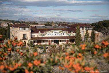 Chuť vášnivého Španělska objevte v cavě Freixenet