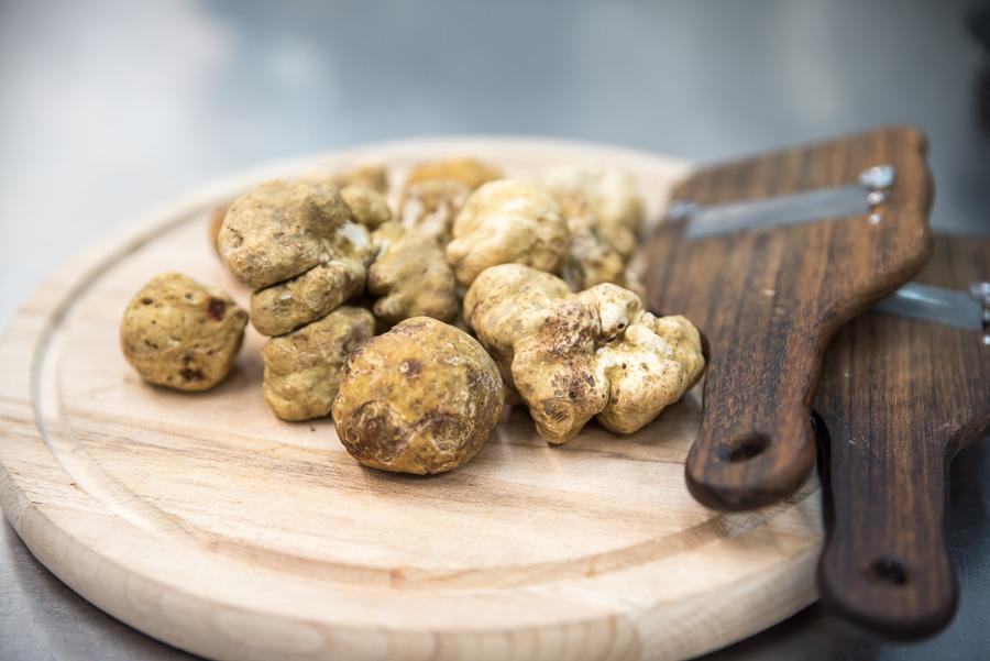 Ošklivá houba s výrazným aroma: do Zlína a Velkých Karlovic míří legendární bílý lanýž