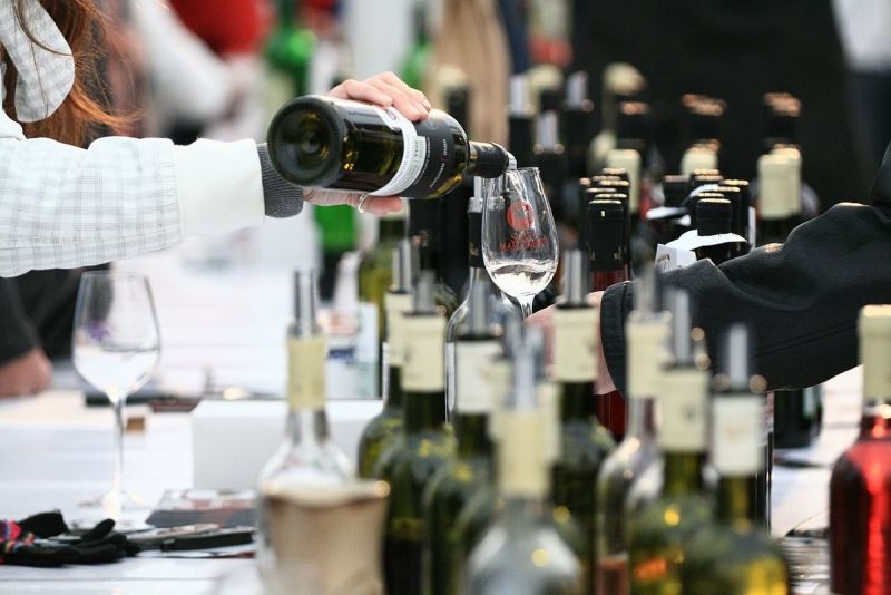 Mladá vína 2019 potvrzují výjimečný ročník