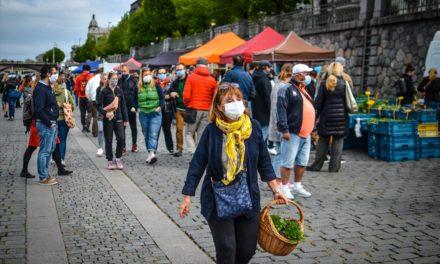 Farmářské trhy po měsíci fungování: poptávka je obrovská, zpět je občerstvení i pouliční umělci
