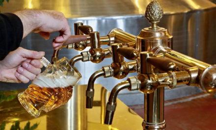 Kozlova škola čepování v pivovaru Velké Popovice se opět otevře 4. července