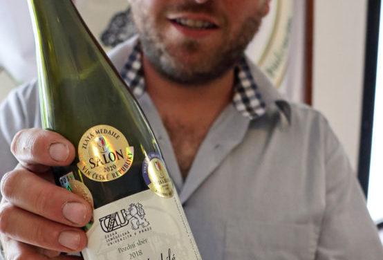 Nejlepším vínem v Čechách je Rulandské bílé  z České zemědělské univerzity