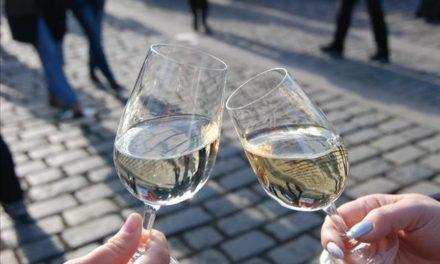 Jubilejní desátý ročník oblíbených Svatomartinských slavností na Rašínově nábřeží nebude