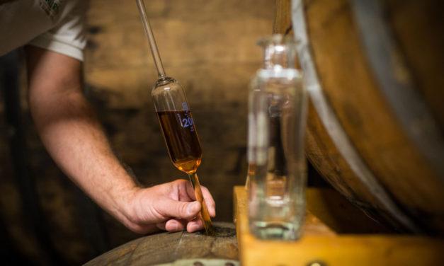 Palírna U Zeleného stromu si ke svému výročí nadělila jedinečný Single Barrel dozrávající v sudech po Pinot Noir
