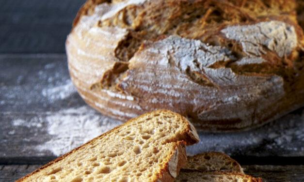 Čeští pekaři oslavili Světový den chleba. Extrémně rostoucí vstupní náklady nutí pekaře promítnout je do cen chleba a pečiva